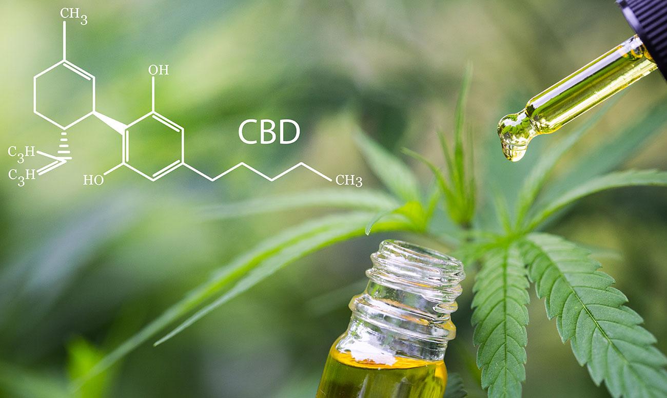 propiedades medicinales del cannabis